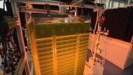 Revolutionieren Algen die Kraftstoffgewinnung?