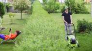 Nachbarschaftsstreit: Wie der Garten zum Schlachtfeld werden kann