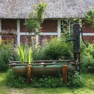 Mehr als nur Dekoration: Mit einer alten Schwengelpumpe und einem Regenwassertank im Boden muss kein Trinkwasser aus der Leitung verschwendet werden, damit der Garten grünt.