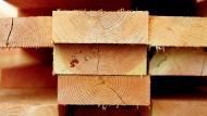 Karrierist: Holz ist gefragt