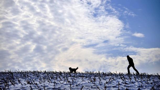 Kurvenskandal, Frühlingspropheten, Eiszeitgerüchte