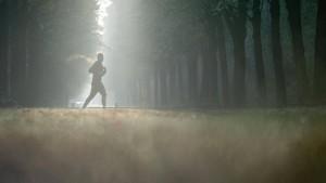 Wie wir dem geistigen Abbau vorbeugen können