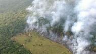 Die Rodung des Urwalds im Amazonas vernichtet nicht nur Regenwald, sondern  setzt auch Unmengen an Methan frei.