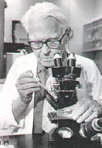 Ein Zelltherapie-Pionier? Der deutschstämmige Embryologe Johannes Holtfreter, der Ende der vierziger Jahre Amphibienzellen in Säure zu Nervenzellen verwandelte.