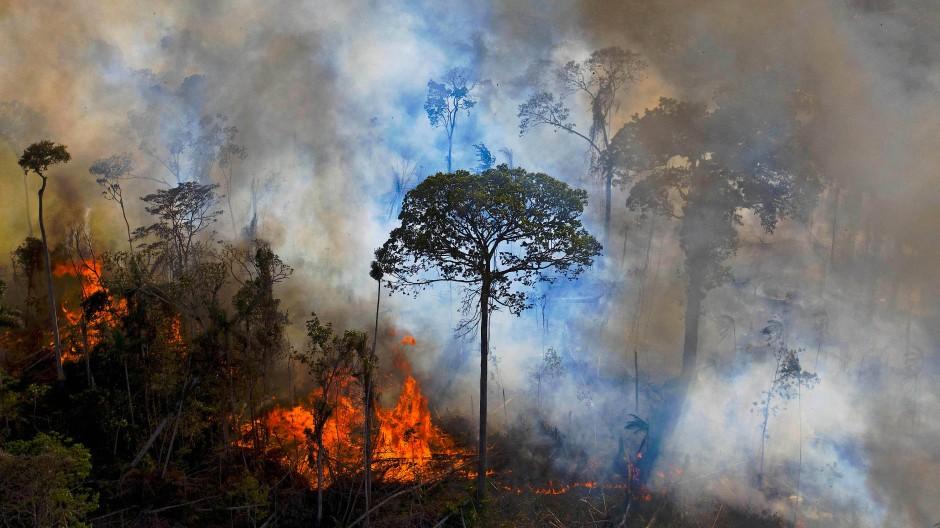 Brennender Urwald in Novo Progresso im brasilianischen Bundesstaat Pará: Im Jahr 2020 brannten 12,7 Prozent mehr Waldfläche am Amazonas als im Jahr davor – Negativrekord im abgelaufenen Jahrzehnt.