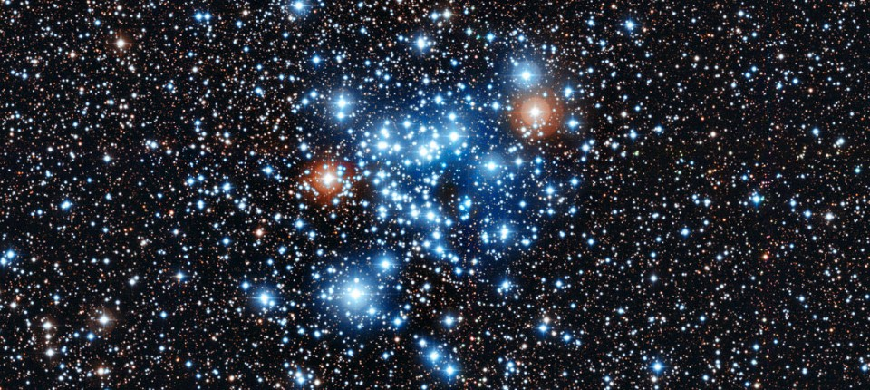 Funkelnder Zuwachs im Sternenzoo