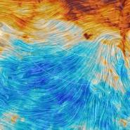 Der Blick des europäischen Weltraumteleskops Planck auf den Ausschnitt des Weltraums, der von Bicep2 durchmustert worden war (von weiße Linie eingekreist). Die unterschiedlichen Farben zeigen unterschiedliche Staubmengen an, die Textur gibt den Verlauf des galaktischen Magnetfeldes wieder - sichtbar gemacht durch die Messung des polarisierten Lichts, das von dem strahlenden interstellaren Staub ausgeht. Das Foto zeigt, dass die höchste Staubkonzentration (oben) in der Ebene der Milchstraße vorkommt, aber die Menge im Bicep2-Sichtfeld durchaus nicht zu vernachlässigen ist.