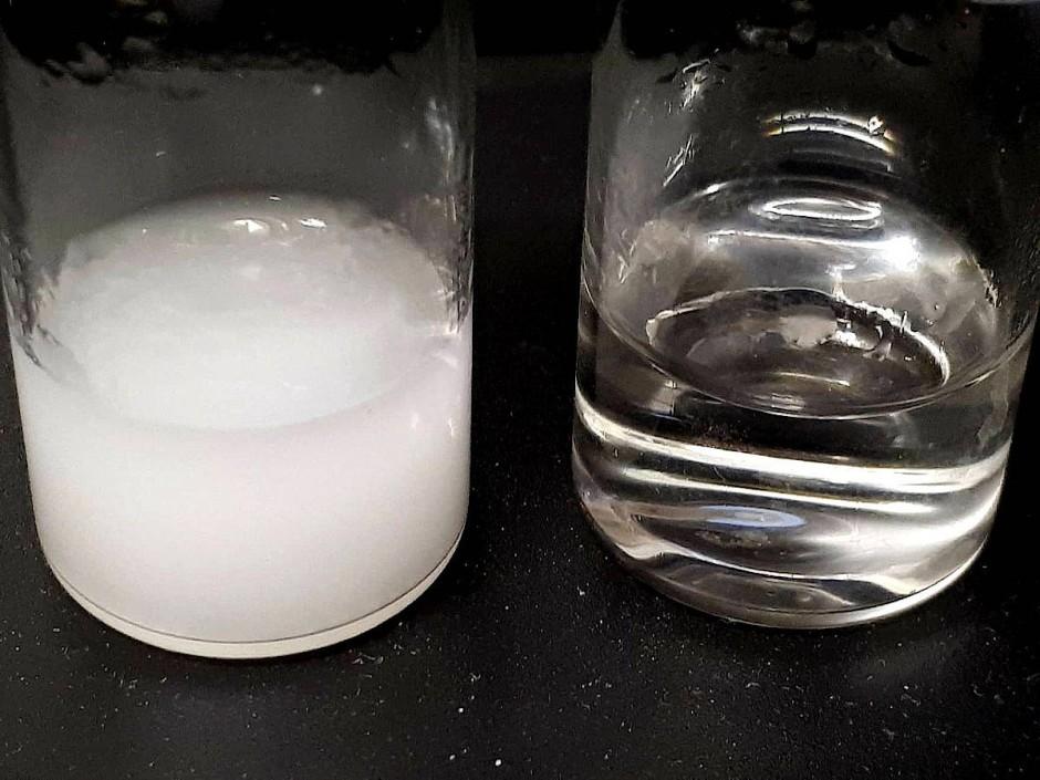 Vorher-Nachher-Wasserreinigung: links ein Behälter mit  Mikroplastik verunreinigtem Wasser;  rechts sauberes Wasser nach der Behandlung mit den magnetischen Nanopartikeln behandelt.