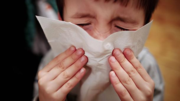 Manche Grippeviren befallen vor allem Kinder