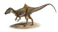 Hypothetische Rekonstruktion von Concavenator corcovatus