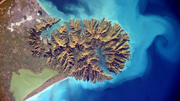 Maoris vernichteten Waldbestand