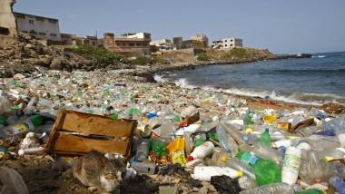 Eine Katze hockt am 13.04.2010 auf dem vor allem mit Plastikflaschen verschmutzten Atlantikstrand von Ngor, Dakar, Senegal.
