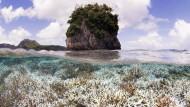 Im Februar 2015 bereits waren Anzeichen einer verbreiteten Korallenbleiche vor Samoa festgestellt.