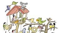Vogelfreude
