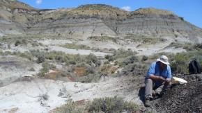 Asteroiden-Einschlag machte Dinosauriern Garaus