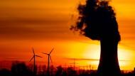Kohlekraft oder Windkraft? Die Waage neigt sich schneller als gedacht.