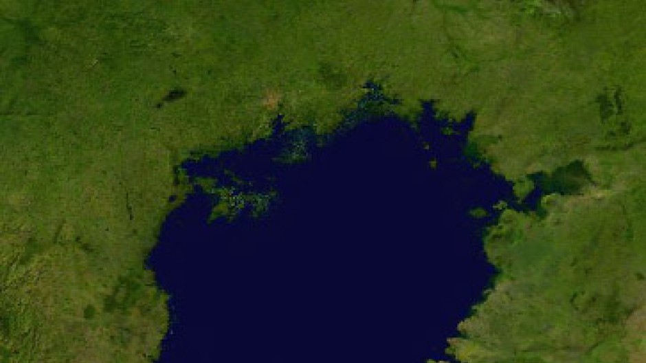 Ein Versuchslabor der Evolution: der Viktoriasee in Ostafrika