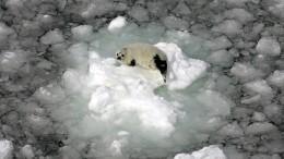 Das letzte Eis schmilzt schneller