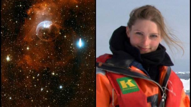 Weihnachtsartikel 2012, NuW, Meine Entdeckungen 2012