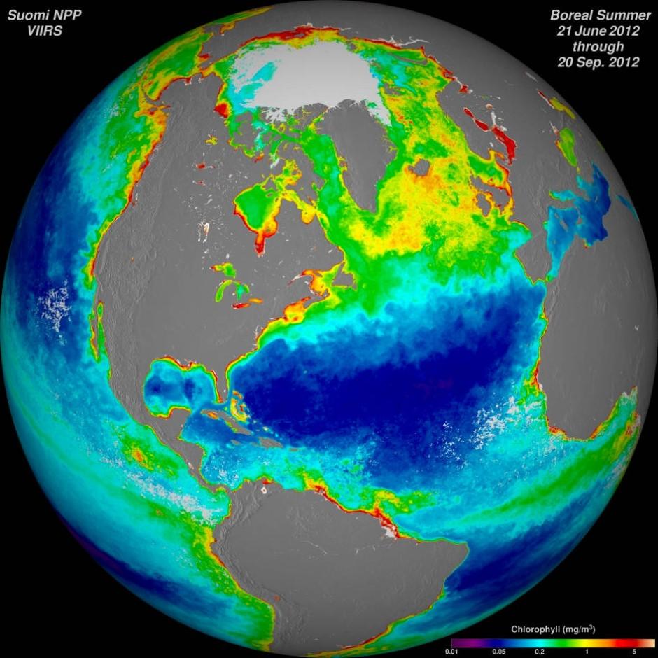Algenblüten an den Küsten. Die Aufnahme ist ein Komposit aus radiometrischen Messungen des Suomi NPP-Satelliten.