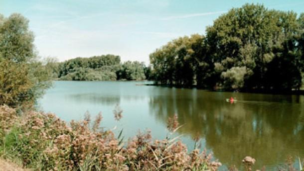 Zwischen Mainz und Basel ist die Erdkruste gespalten
