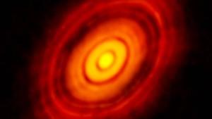 Gestochen scharfe Planeten-Keime