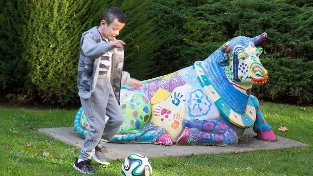 Gentherapie der Haut rettet todkranken Jungen