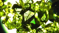 Luftige Kristalle aus dem Herzen der Natur