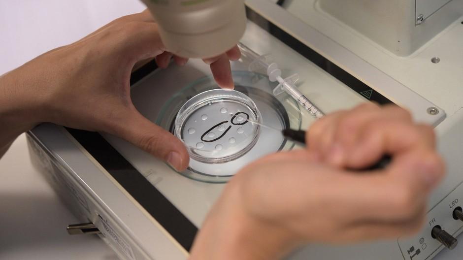 Präparation der künstlichen Befruchtung in einer Kinderwunschklinik.
