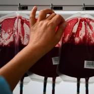 Die Zeit, als Blutkonserven mit lebensbedrohlichen Hepatitis-C-Erregern verseucht waren, gehört dank der drei Medizin-Nobelpreisträger der Vergangenheit an.