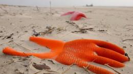 Brauchen wir eine Welt ohne Plastik?
