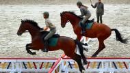 Reiter üben bei der Generalprobe für die diesjährigen Hengstparaden im Landgestüt Redefin (Mecklenburg-Vorpommern