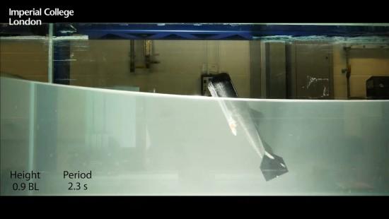 Der fliegende Roboterfisch