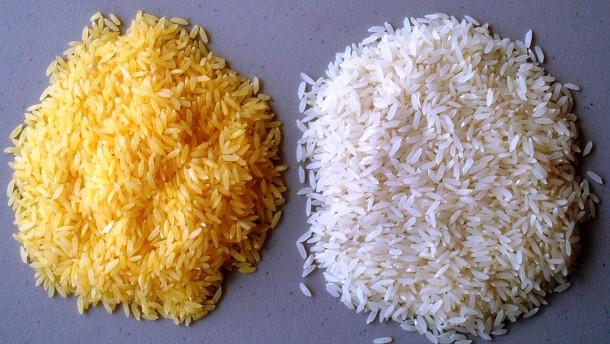 Machtkampf um den Goldenen Reis
