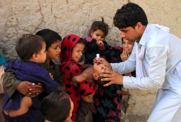 bild zu polio virus die neuen quellen der kinderl hmung