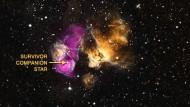 Der überlebende Stern (Pfeil) befindet sich inmitten einer expandierenden Gaswolke, welche die Supernova bei ihrer Explosion abgesprengt hat (orange-braun). Die vom Weltraumteleskop Chandra gemessene Röntgenstrahlung erscheint violett.