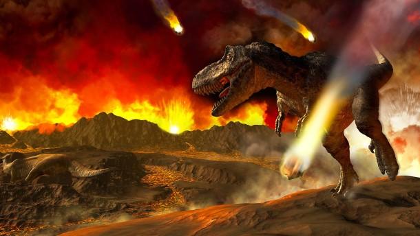 Artensterben schlimmer als am Ende der Dinosaurierzeit