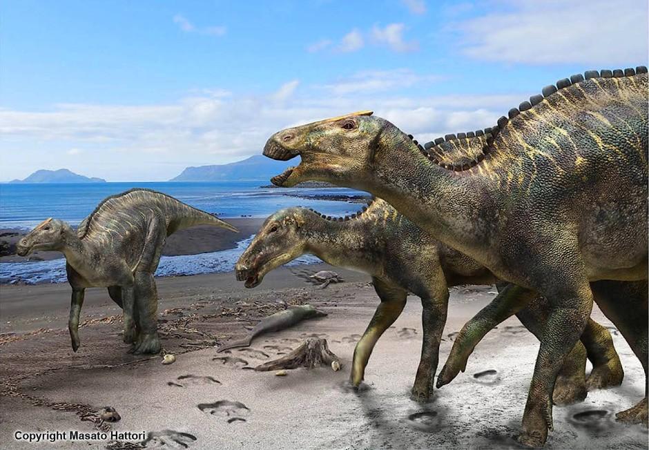 Pflanzenfressende Dinosaurier: Kamuysaurus japonicus. Auch sie zählten durch die Umweltauswirkungen des Einschlags zu den Opfern – wie drei Viertel aller Tierarten seinerzeit.