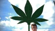 Laborratten der Drogenpolitik