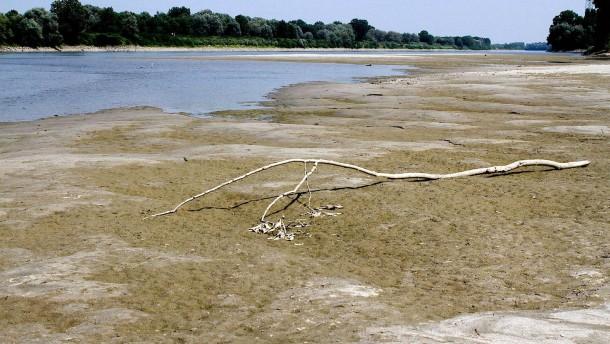 Was kommt nach der großen Dürre?