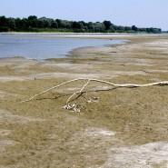 So wenig Wasser wie derzeit floss im Po schon lange nicht mehr. Das Foto wurde am 23. Juni 2017 in Staffarda aufgenommen.