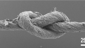 Ein Knoten à la Nano