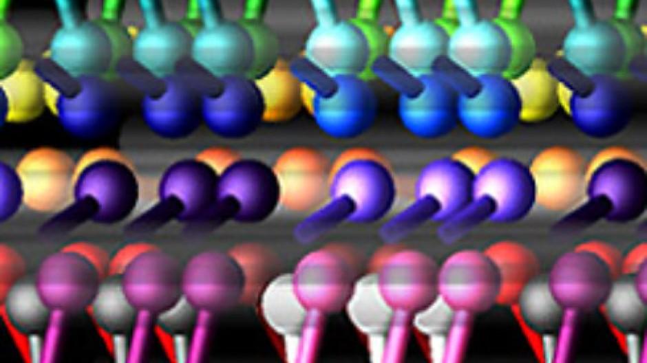 Systembiologische Simulation eines dynamischen Netzwerks