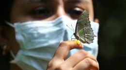 """Die """"dritte Welle"""" der Pandemie rollt unbemerkt"""