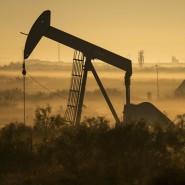 In den Vereinigten Staaten wurden zuletzt immer mehr Ölpumpen installiert.