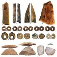 Fundstücke der Höhle Panga ya Saidi: Die Schmuck-Perlen 5-9 sind aus Straußeneierschalen gemacht, die Perlen 10-13 bestehen aus Muscheln. Ansonsten zu sehen: Steinzeitliche Werkzeuge und Artefakte
