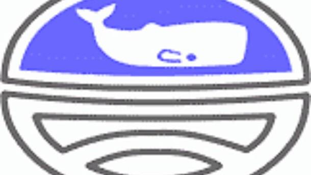 Internationale Walfangkommission