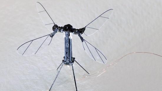Minidrohne fliegt erstmals ohne Kabel