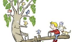 Vom Schein der Robinien