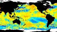 Rötliche Färbung im tropischen Pazifik - das heißt ungewöhnlich warmes Wasser. Die Datenauswertung des amerikanischen El-Nino-Warndienstes vom 12. Mai.